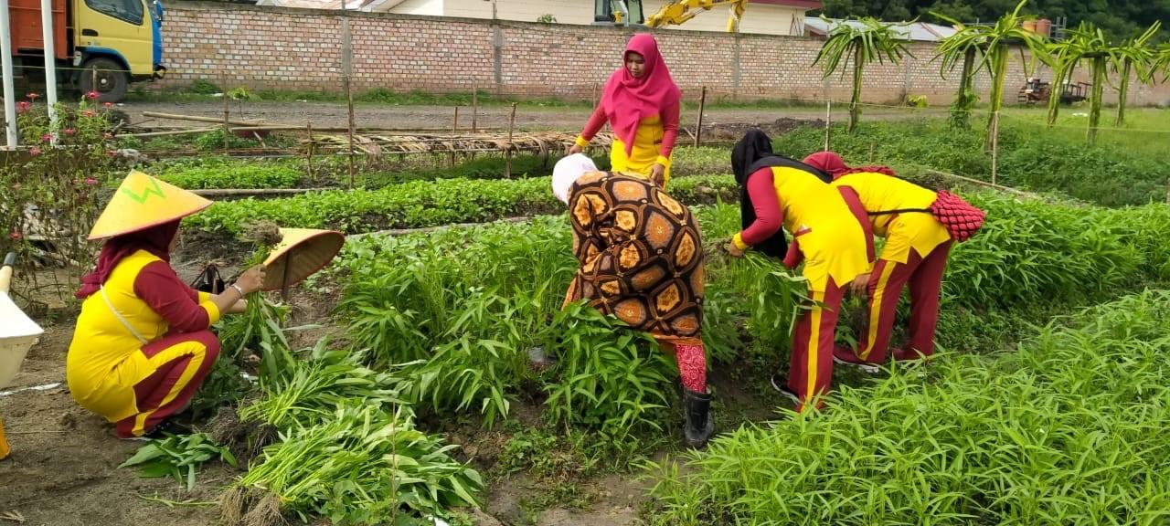 Peran Penting Perempuan dalam Gerakan Sosial Agroekologi